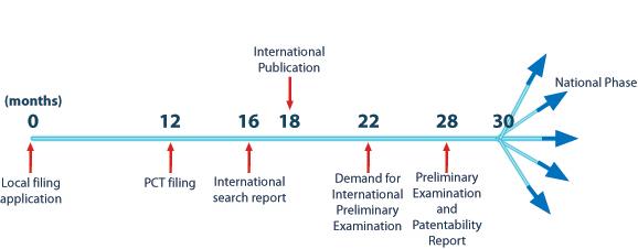 patent-cooperation-treaty-application-procedure_edit